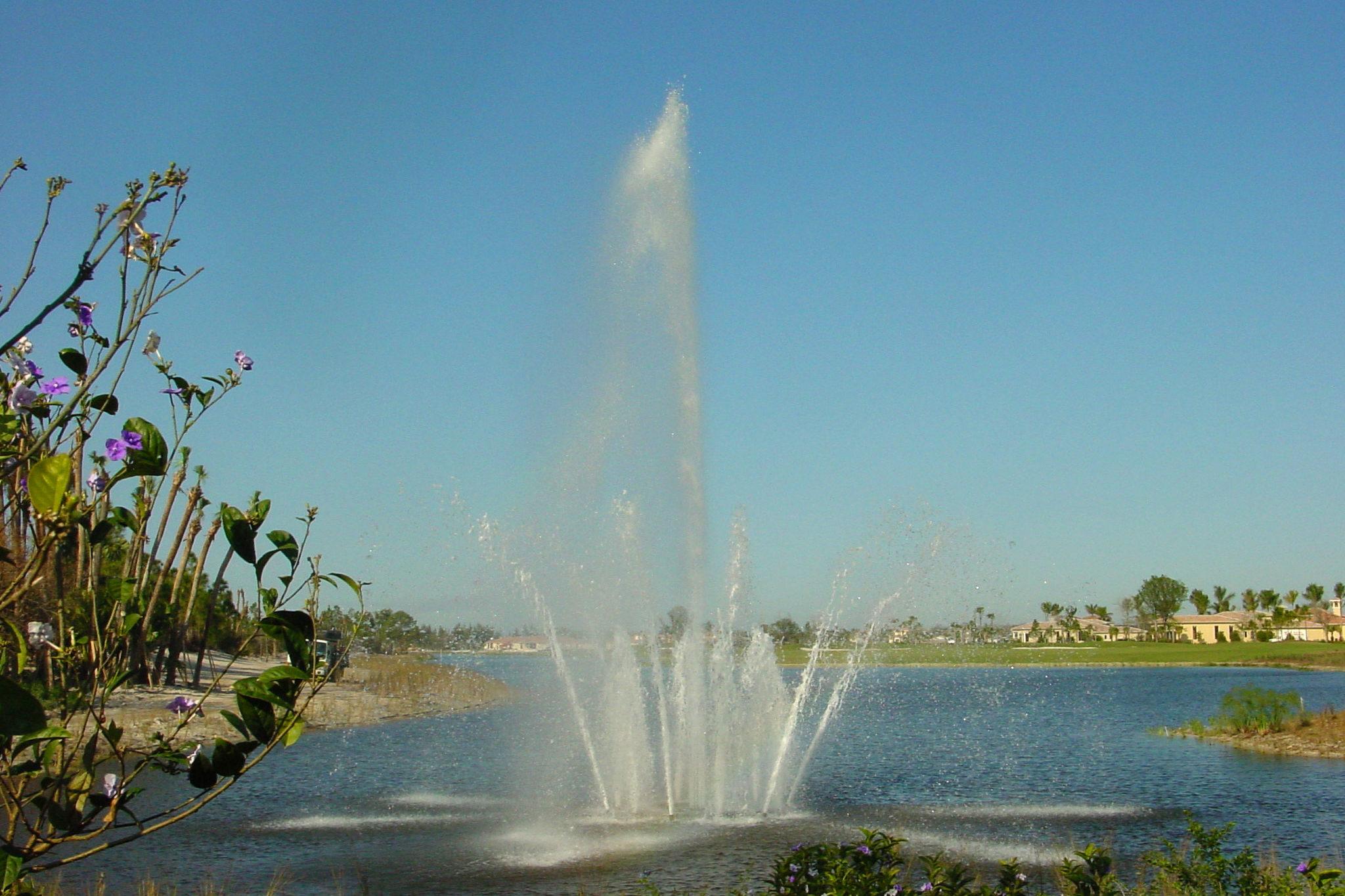 Custom Multi-Jet Floating Fountain