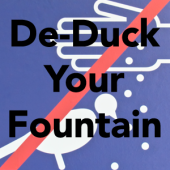 How To De-Duck Your Fountain