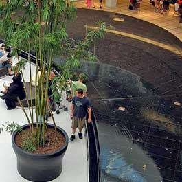 Natick Mall Reflecting Pool
